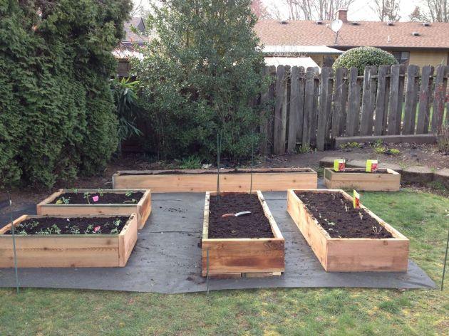 Garden Beds Complete