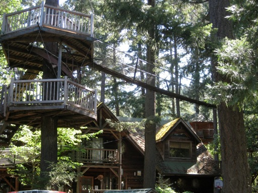 Treehouse catwalk